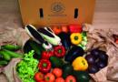 «L'agriculture bio est l'expression d'une prise de conscience»
