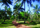 L'île de Zanzibar: parfums capiteux et saveurs d'épices