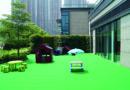 L'école, «Les Petits Lascars», ouvre dès septembre à Tseung Kwan O