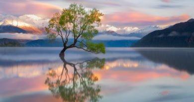 Nouvelle-Zélande, un voyage d'une vie